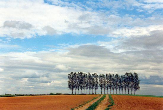 Landschaft in Hohenlohe