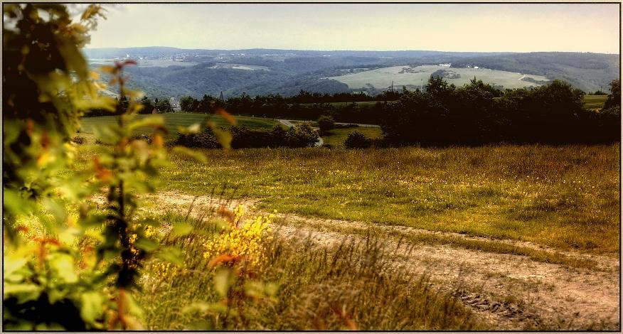 … Landschaft in Hunsrück….