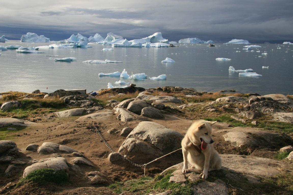 Landschaft in Ilulissat (Grönland)