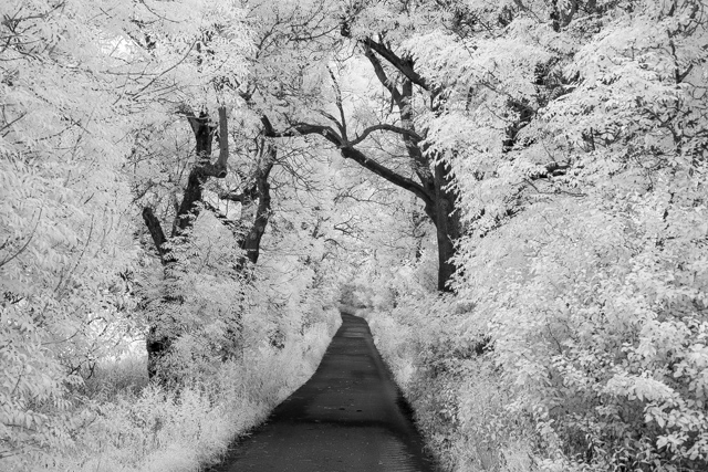 Landschaft in IR - 1