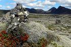 Landschaft in Island ( Pingvellier
