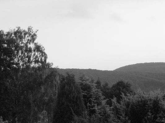 Landschaft in Kreiensen