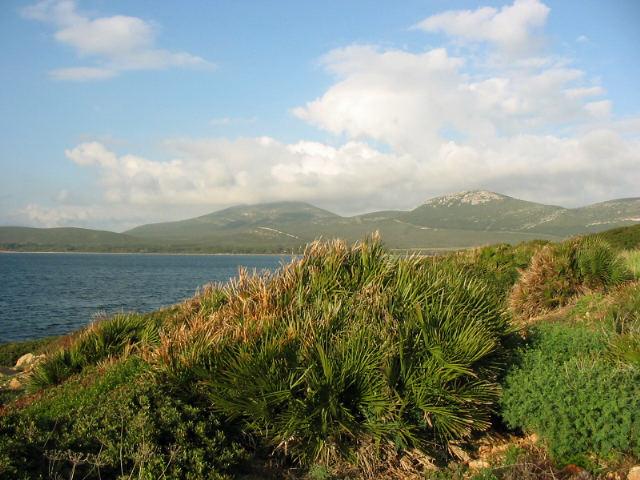 Landschaft in Sardinien
