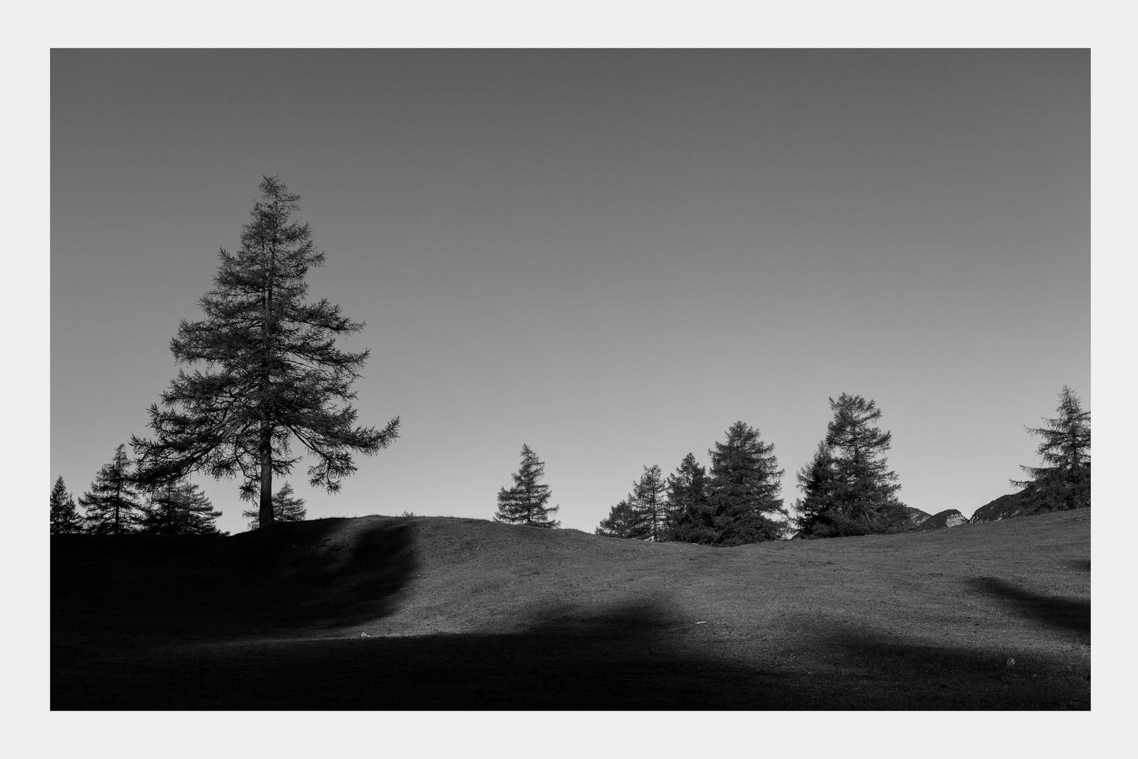 Landschaft in schwarz weiß
