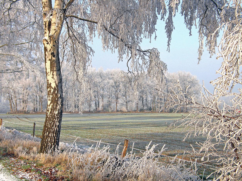Landschaft in weiß............