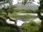 Landschaft um Kylemore Abbey - Irland Urlaub 2014