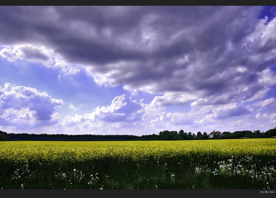 Landschaften 00011