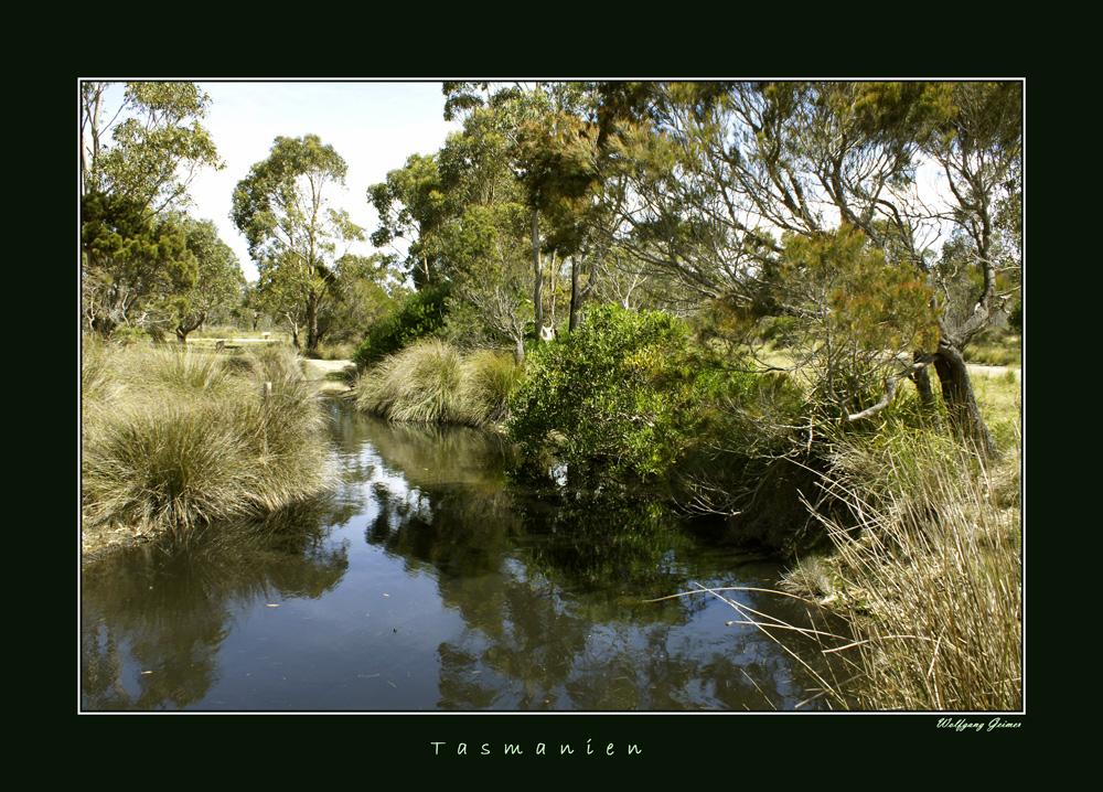 Landschaften Tasmaniens4