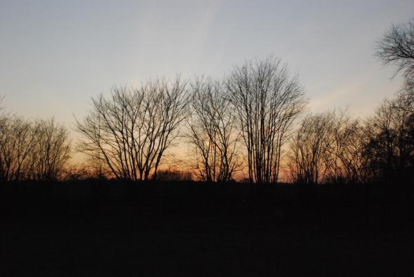 Landschaftliches I