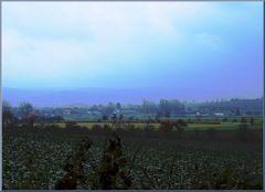 Landschaftsaquarell (next one)