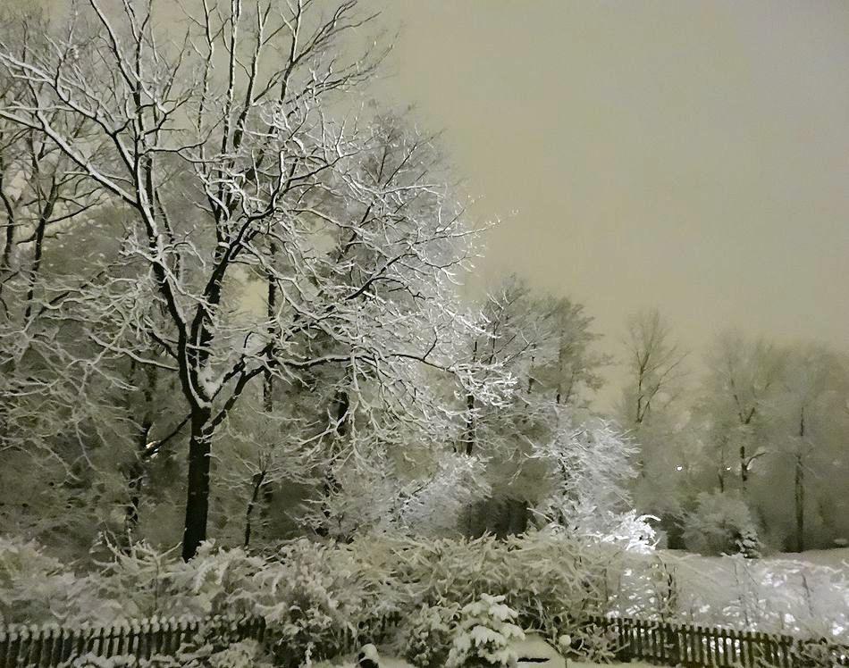 Landschaftsaufnahme - Winter