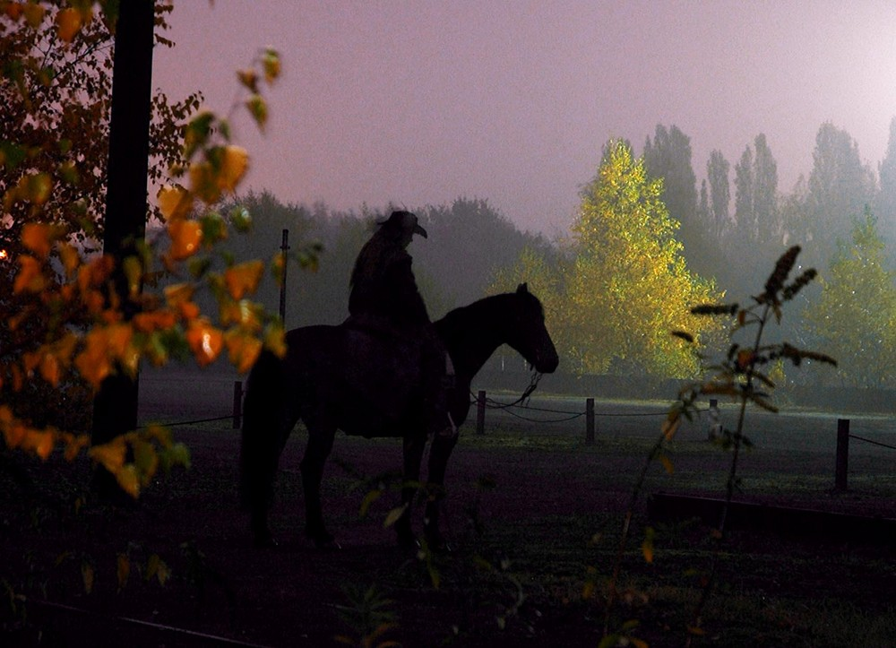 Landschaftspark Pferd im Morgengrauen