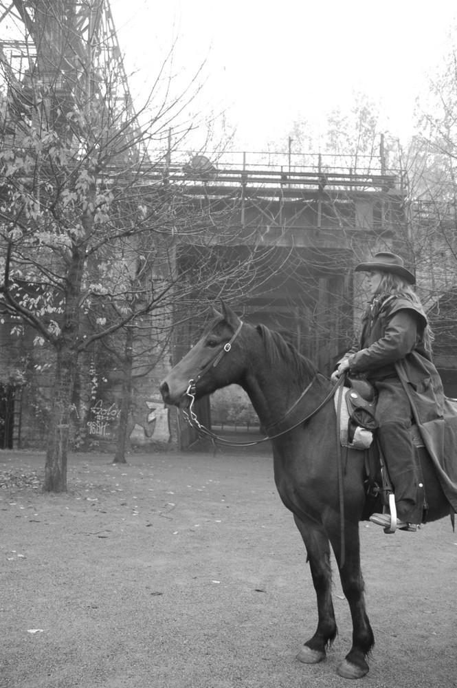 Landschaftspark Pferd im Morgengrauen 2
