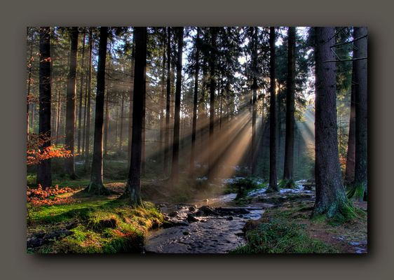 Landschaftsstimmung Silberbach 01