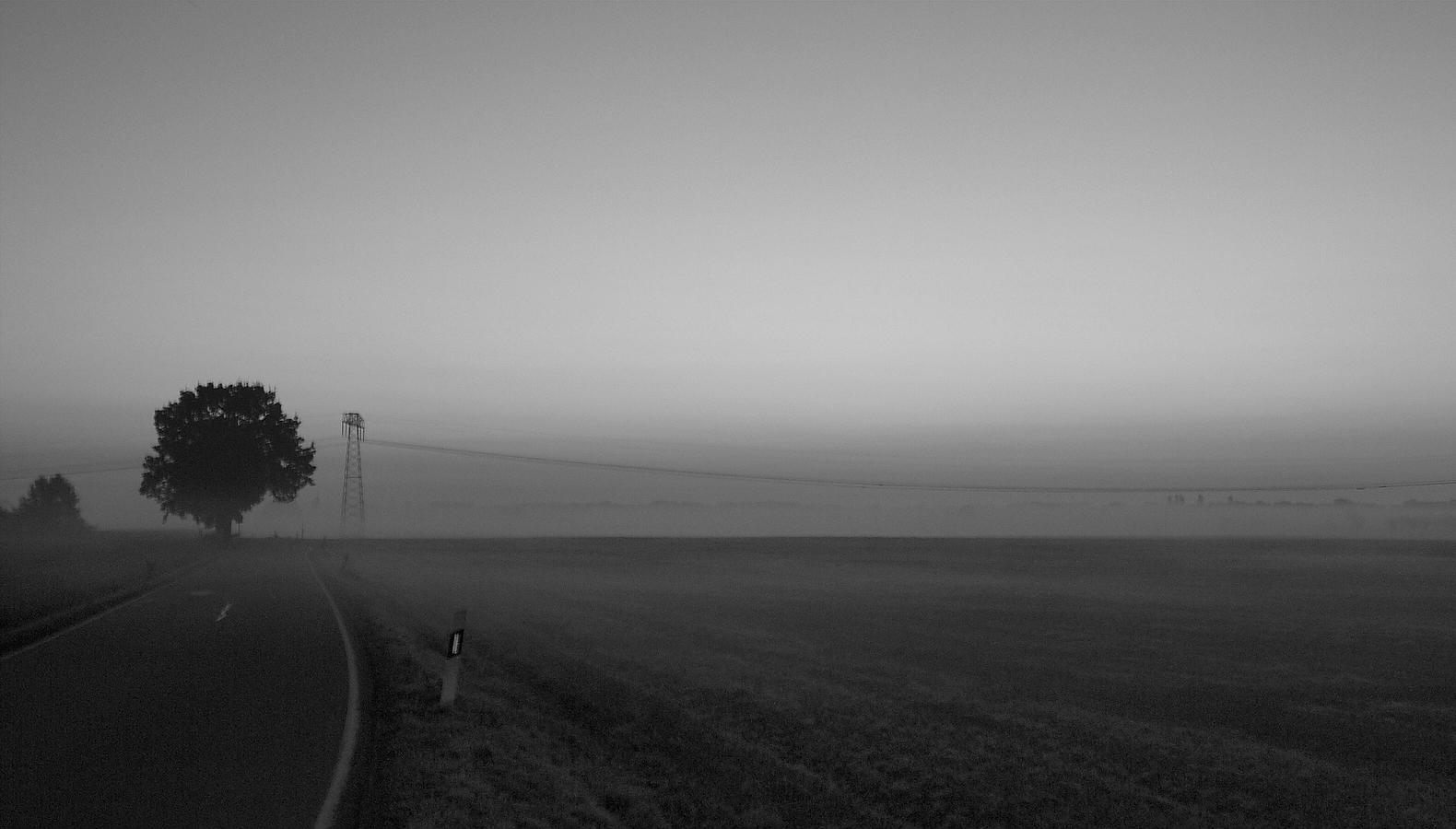 Landstraße - morgens auf dem Land
