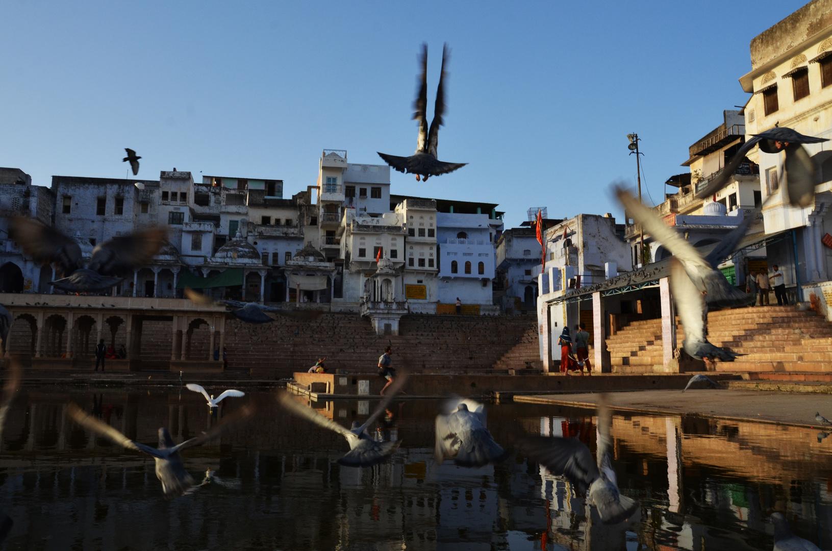 Landung in Pushkar erfolgt in Kürze