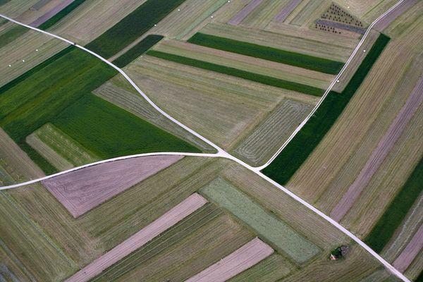 ... landwirtschaft ...