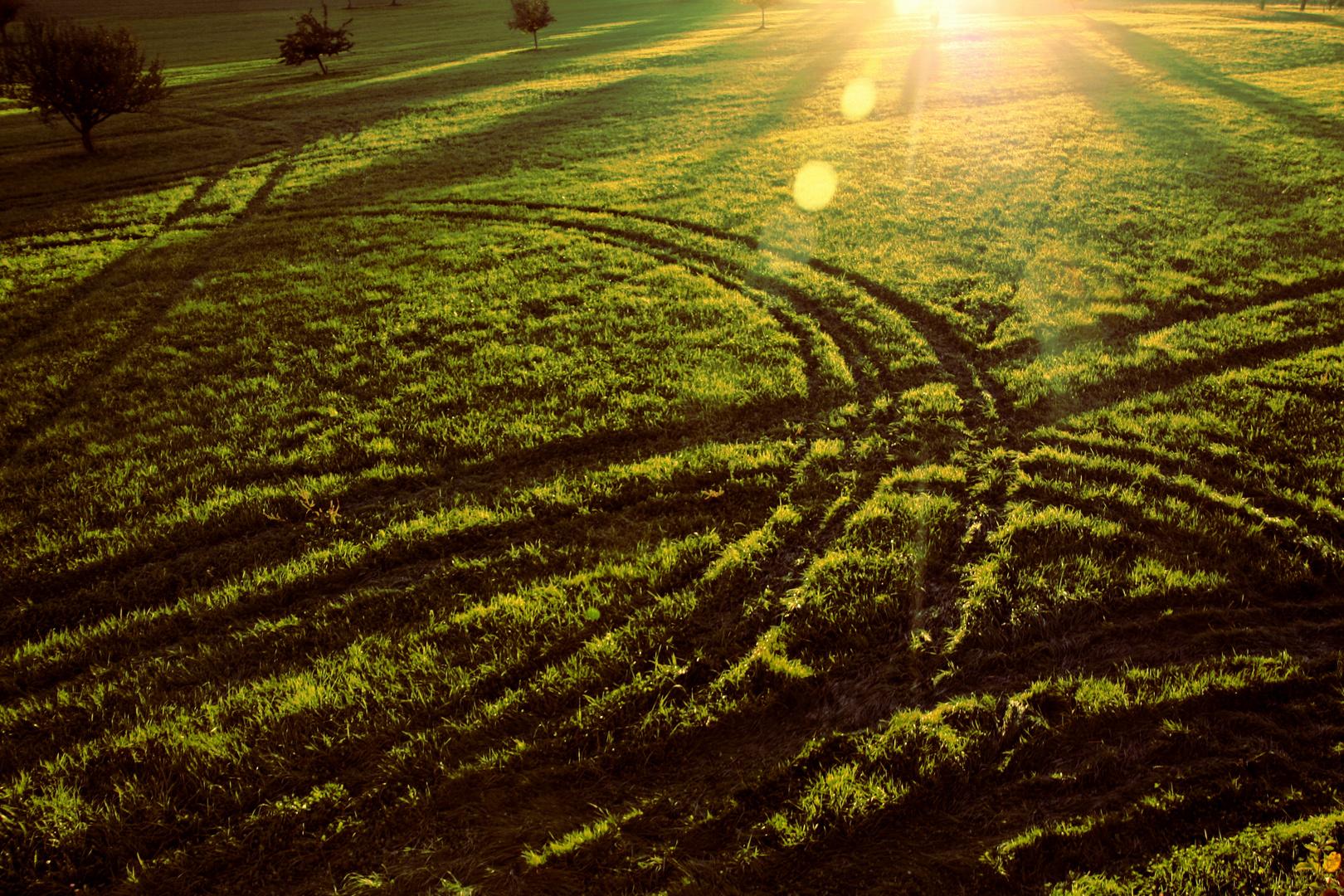 Landwirtschaft trifft Landschaft