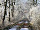 Lang war der Weg und manchmal sehr kalt...