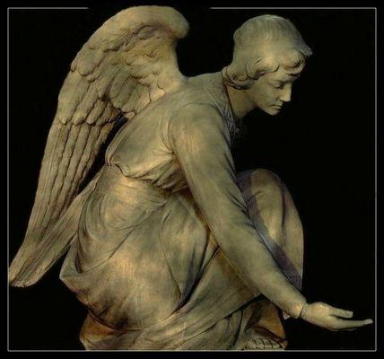 L'ange de la cathédrale