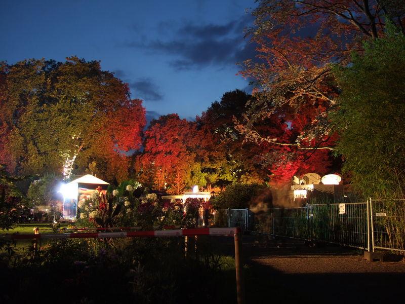 Lange Nacht im Kölner Zoo (Flora)
