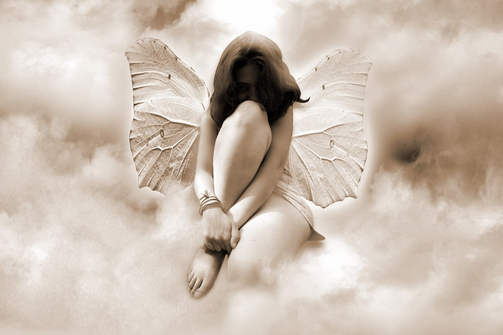 l'ange papillion s'ennui