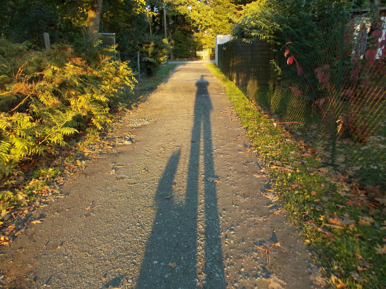 Langer Herbstschatten