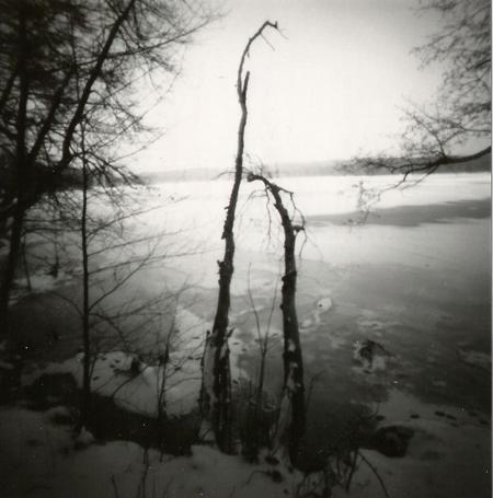 Langer See, Treptow / Köpenick