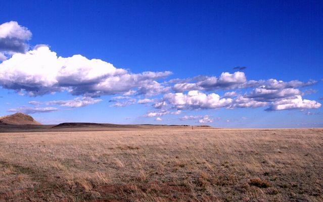 Langgrasprärie im mittleren Westen der USA