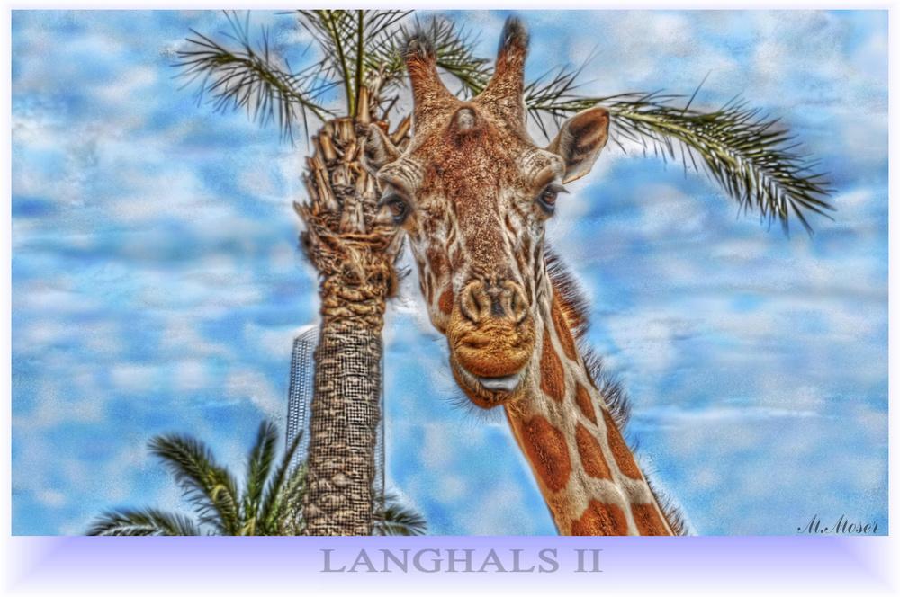 LANGHALS II