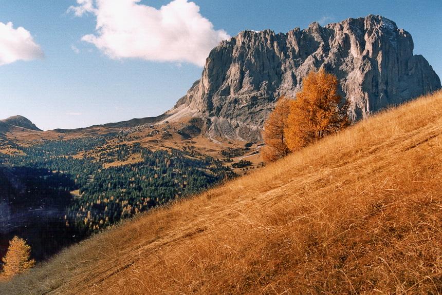 Langkofelblick vom Grödner Joch ,Dolomiten , Südtirol