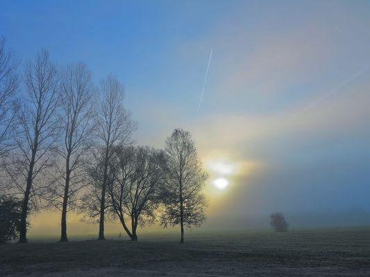 langsam durchdringt die Sonne die Nebelwand