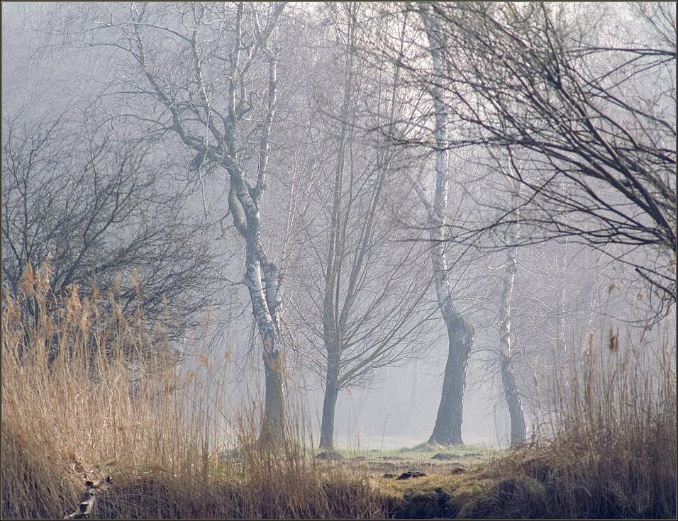 Langsam lichtet sich der Nebel...