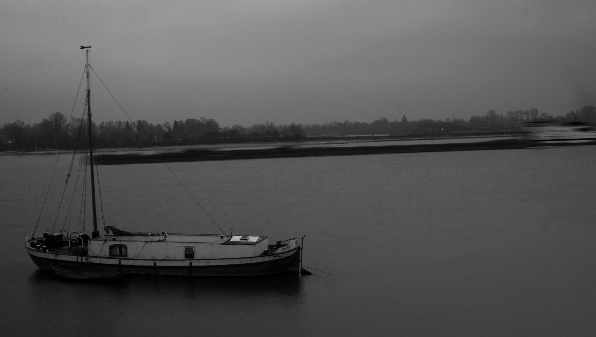 Langzeit Res; Rhein; März 2014
