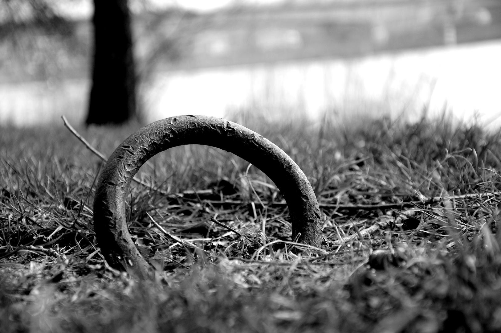 """""""L'anneau des certitudes"""""""
