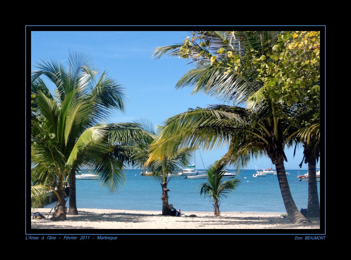 L'Anse à l'âne - Février 2011 - Martinique