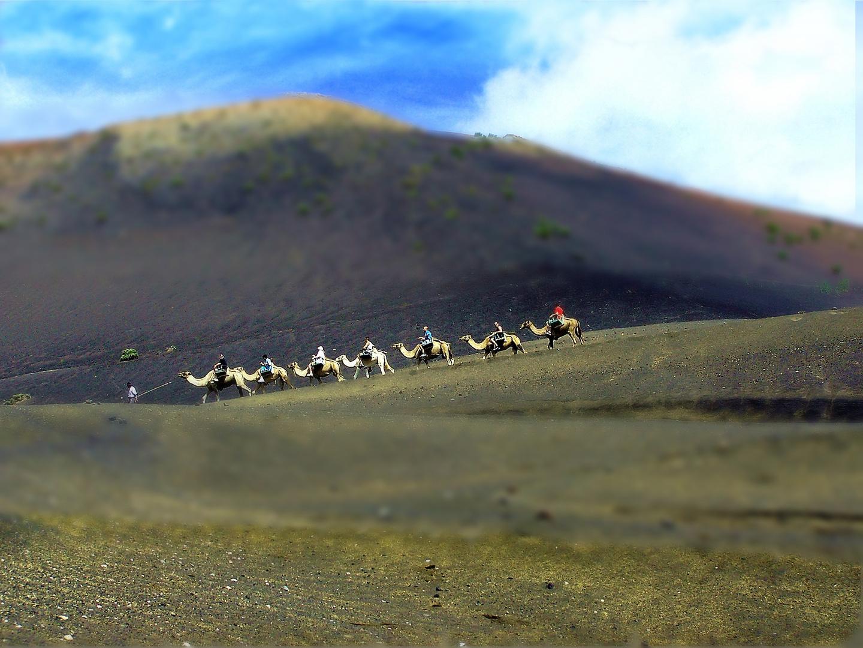 Lanzarote - 7 camellos por  tierras volcánicas