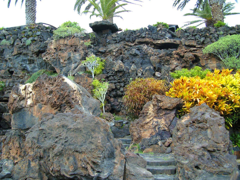 Lanzarote-Blüten
