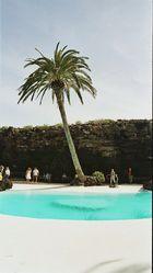 Lanzarote .cameos del aqua