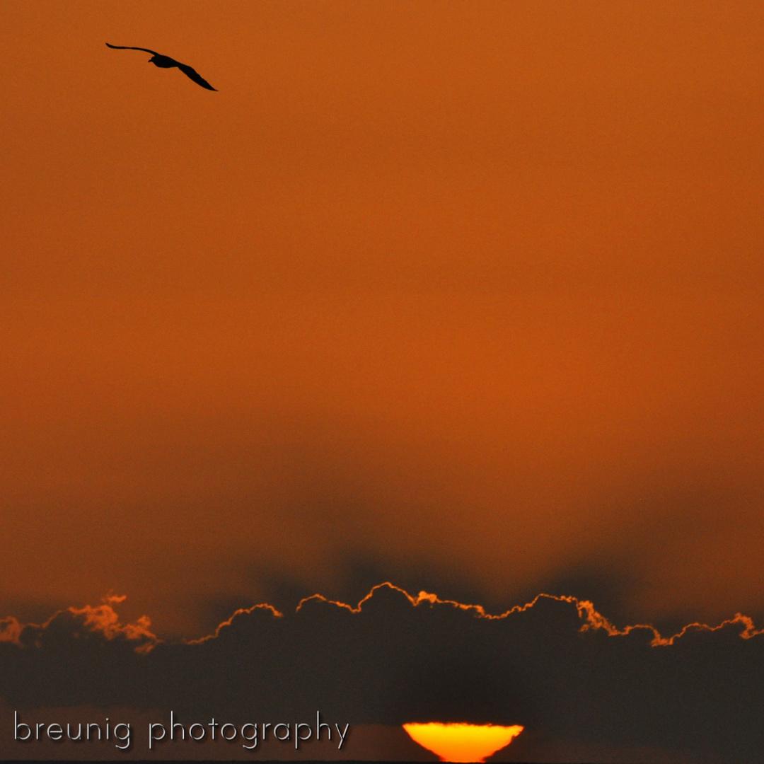 lanzarote sunset - january 2013