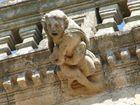 Laocoonte. Gárgola de la Catedral de Coria (Cáceres)