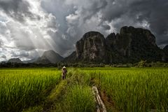 Laotian Summer