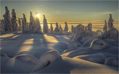 Lapland Jan 2016