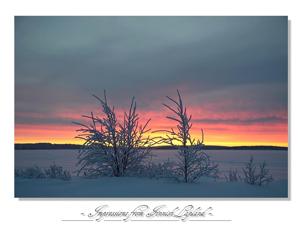 Lapland 2011 (3)