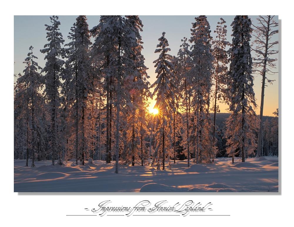 Lapland 2011 (5)