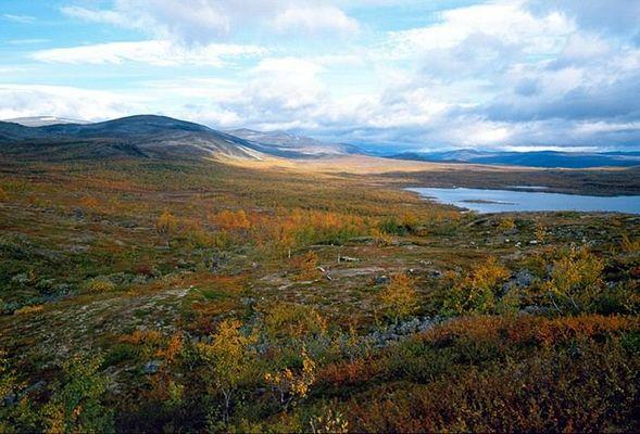 Lappländische Herbstlandschaft