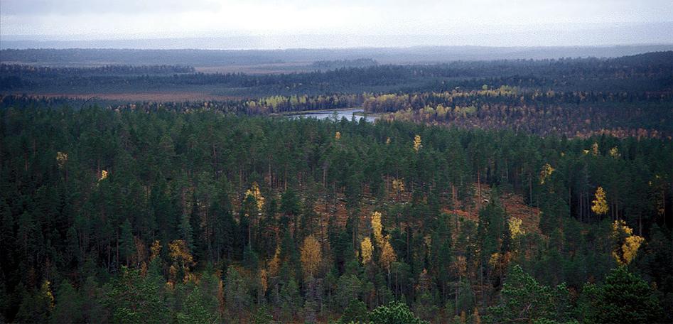 Lappland II