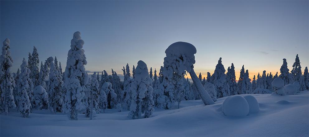 Lappland im Februar 2013