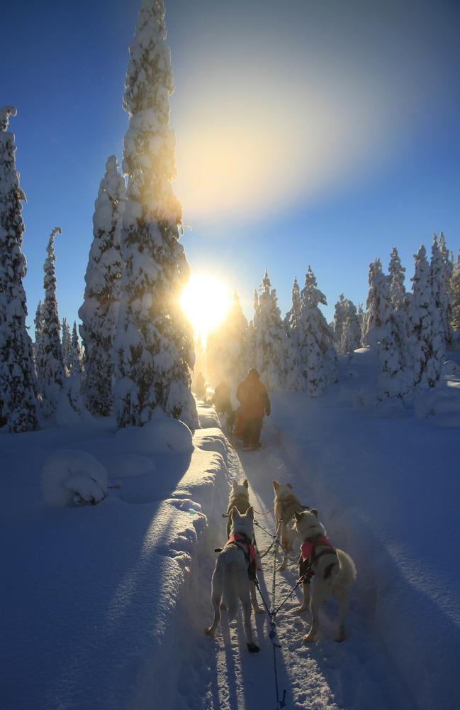 Lappland Image