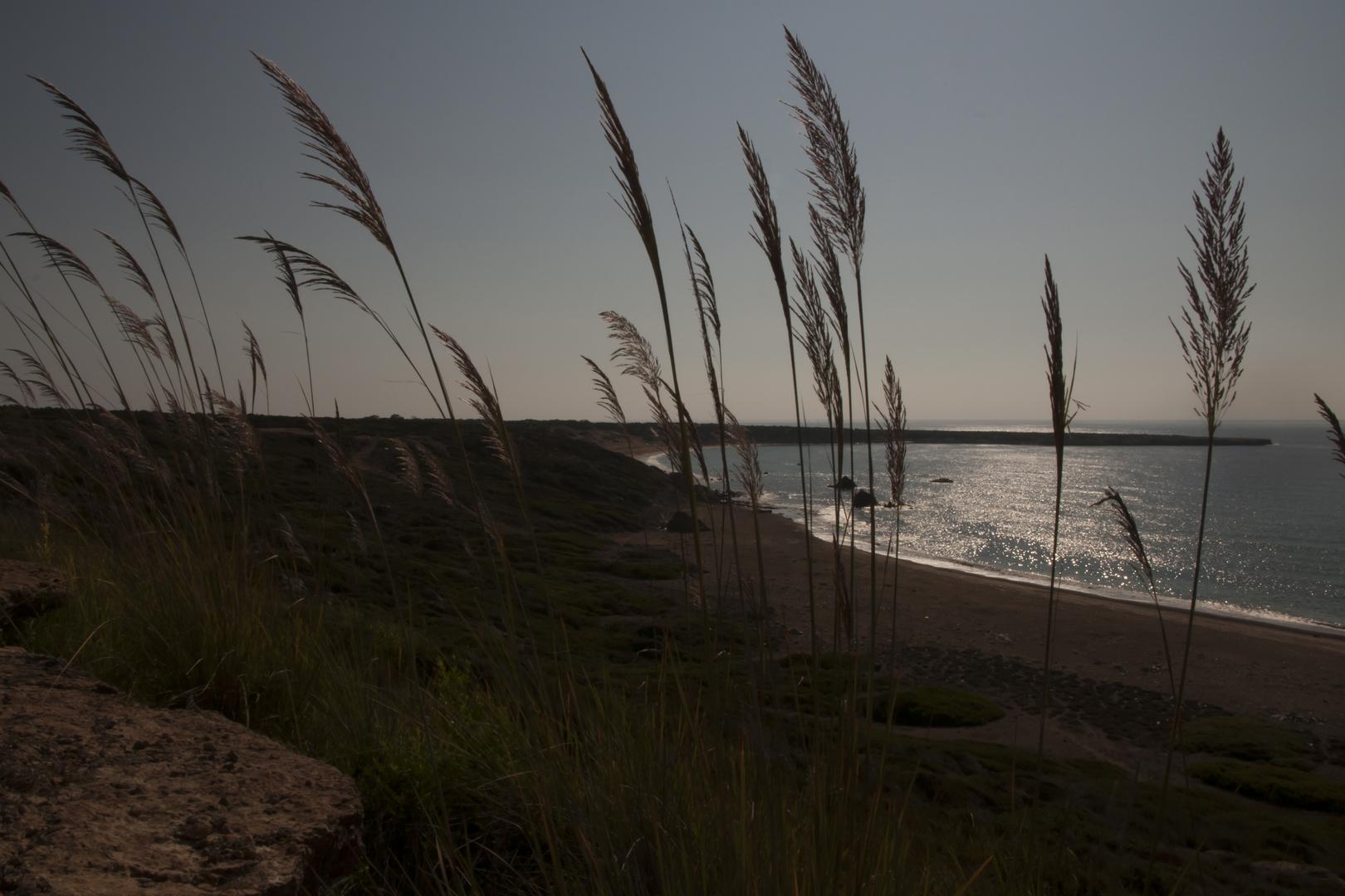 Lara Beach (Cyprus)